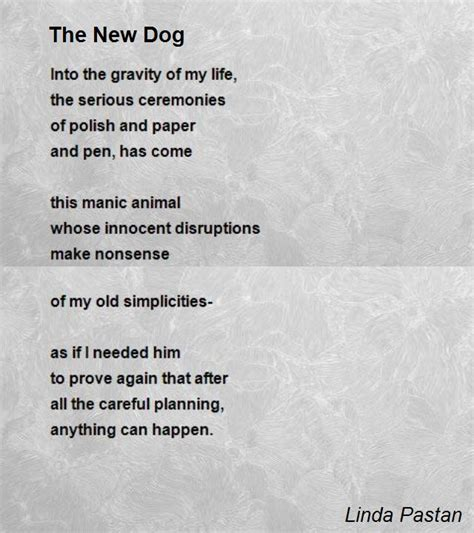 poems about dogs the new poem by pastan poem