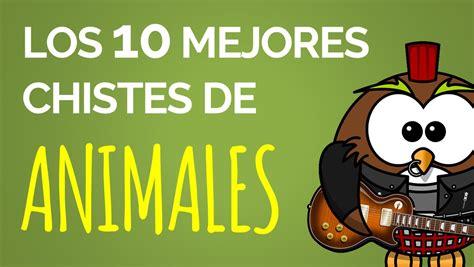 chistes cortos de animales los 10 mejores chistes de animales