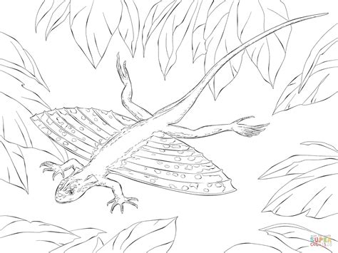 water monitor coloring page asian water monitor pages realistic coloring pages