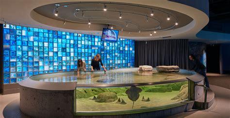 aquarium design mumbai toledo zoo aquarium ehdd