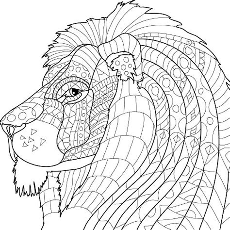 coloring books for adults pencils animal kingdom coloring book set with colored