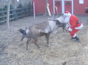 Watch santa feed the reindeers live