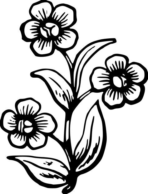 Big Flower Drawing big flower drawing clipart best