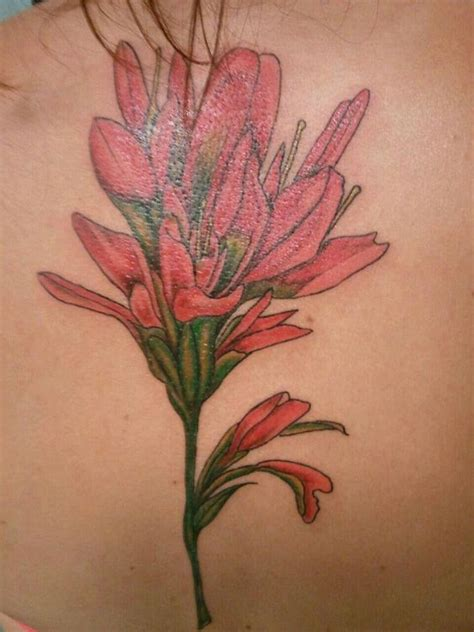 indian paintbrush tattoo indian paintbrush indian and paintbrush on