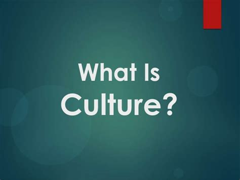 what is what is culture