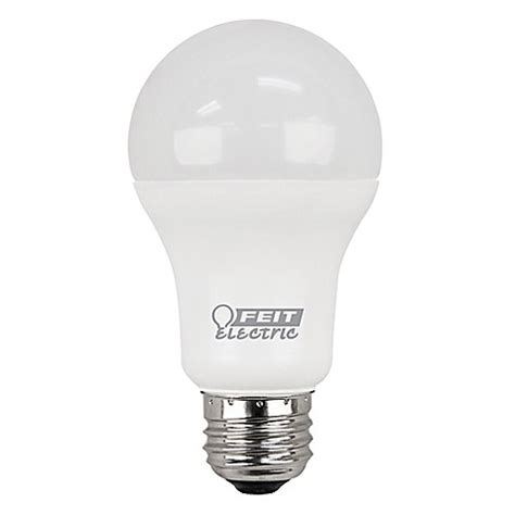 Led Light Bulbs 100 Watt Buy Feit Electric 2 Pack 100 Watt Equivalent A19 Led Daylight Light Bulbs From Bed Bath Beyond