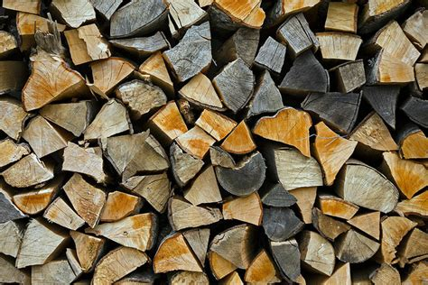 firewood facts how to choose the best firewood hartford ct