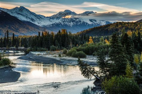 alaska colors alaska bears glaciers and fall colors photograhpy tour