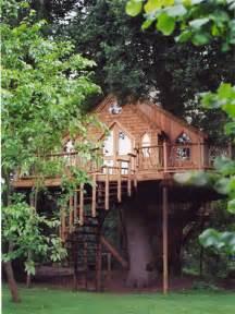 real treehouse luxury treehouses mcnaughton real estate real estate