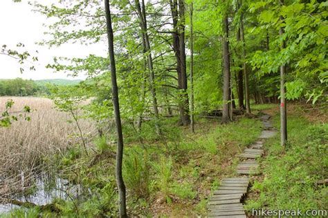 hikes in the southern tier hikespeak com