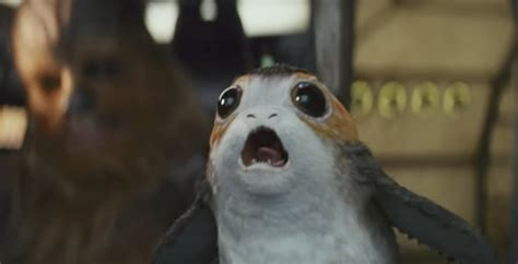 wars the last jedi chewie and the porgs books what are porgs in wars the last jedi popsugar