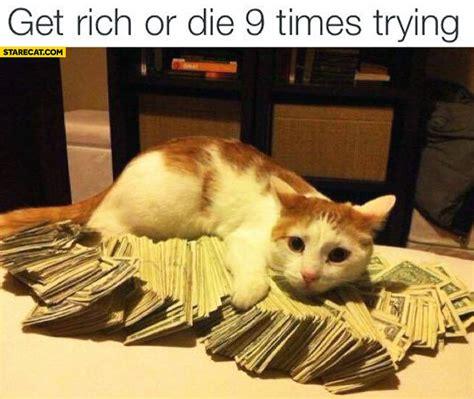 Rich Cat Meme - starecat com best memes gifs and funny pictures online memes