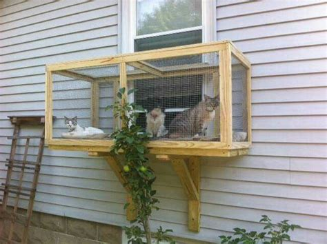 cat window box enclosure 25 best ideas about cat window perch on cat