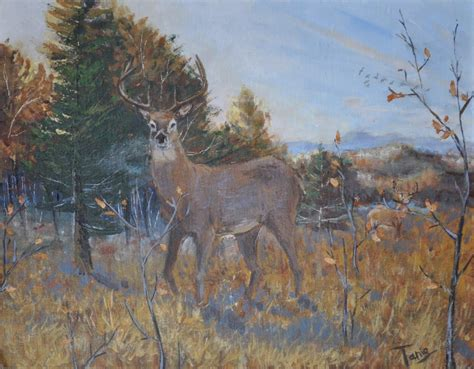 acrylic painting deer deer original acrylic painting by igoingwest by