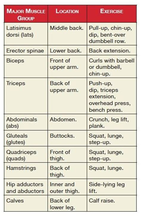 best 25 exercise chart ideas on leg workout