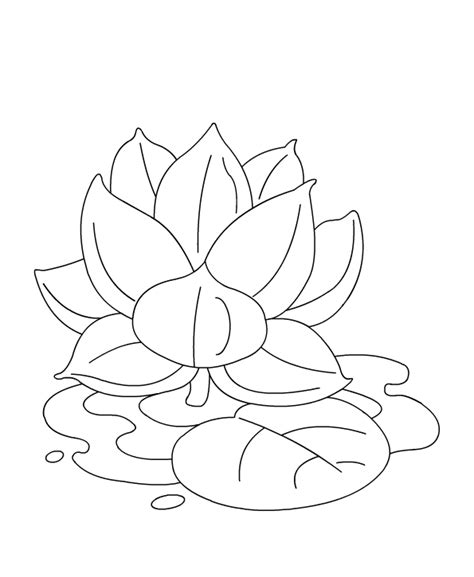 coloring pages of lotus flowers color lotus
