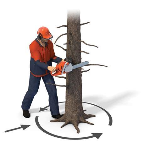 Gergaji Mesin Kecil Stihl teknik menebang pohon bag 3 persiapan sebelum menebang bengkel mesin chainsaw gergaji mesin