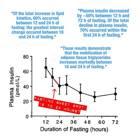 intermittent fasting research papers the sweet spot for intermittent fasting the mission medium