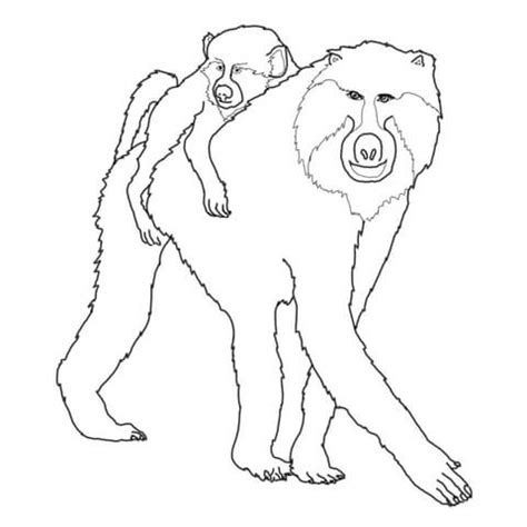 mohter and baby baboon coloring page supercoloring com