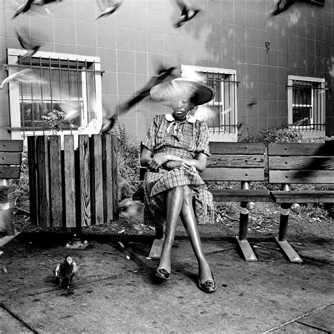 shelters in dc margie the pigeons 2nd d homeless shelter washingt flickr