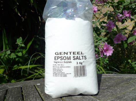 How Much Epsom Salts In Bath To Detox by Epsom Salt Magnesium Sulphate Imported From Germany