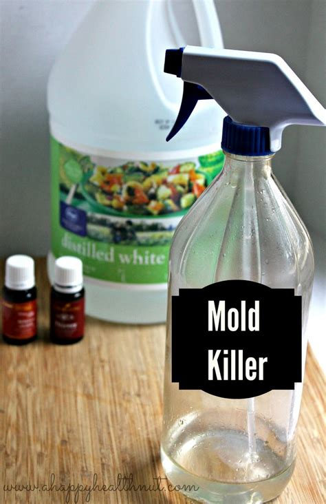 How To Detox After Living In Mold by 1000 Ideas About Living Detox On