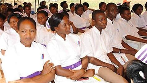 Nursing School Abuja - naijaclass your class of school update