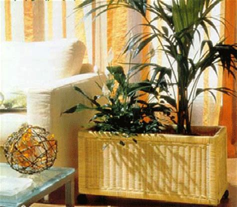 home decorating plants decorating with indoor plants to improve air quality