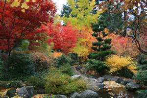 Backyard Meditation Gardens by Japanese Maples A Spectacle Of Vibrant Color Garden