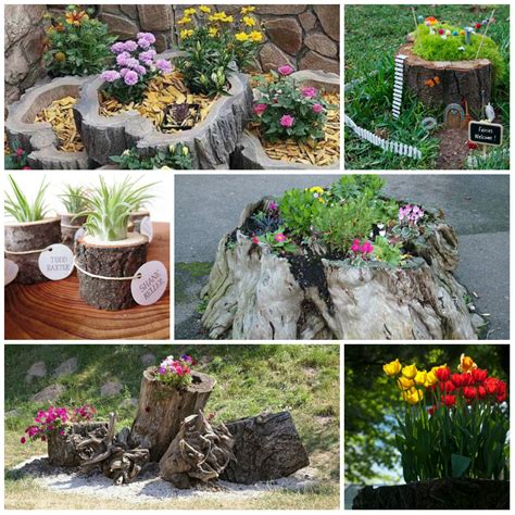 Things To Decorate Tree by Flower Stump In The Garden