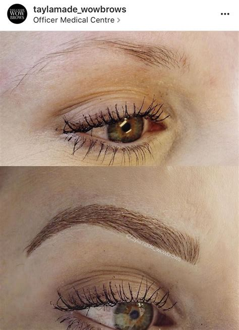 feather touch eyebrow tattoo 121 best cmh tayla made wow brows feather touch