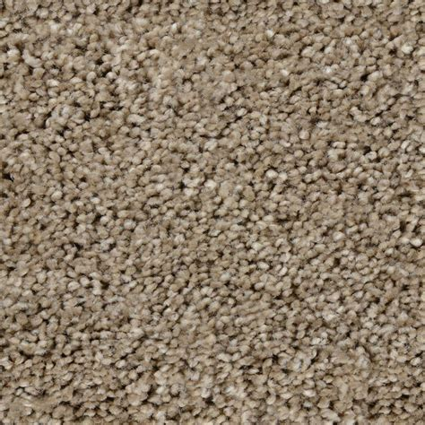 home decorators collection carpet sle trendy threads