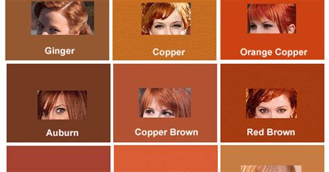 chart of haircolors hairstyle hair color chart and shades