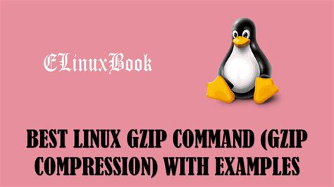 tutorial gzip linux best linux gzip command gzip compression with examples