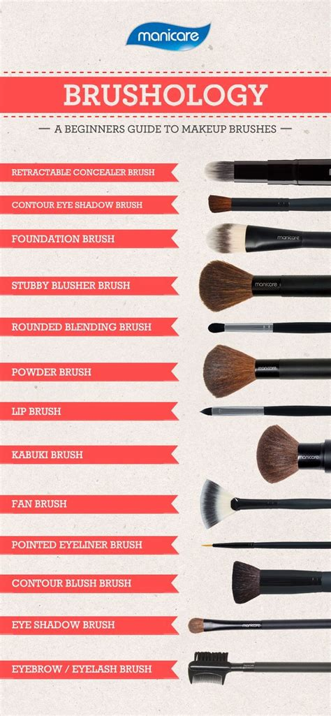 brushology a beginners guide to makeup brushes trusper