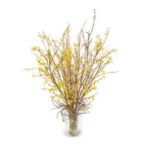 forsythia arrangement new growth designs