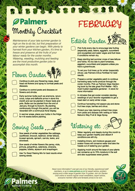 vegetables to plant in february february gardening nz tips palmers garden centre