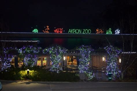 zoo lights cleveland akron zoo to kick themed lights event