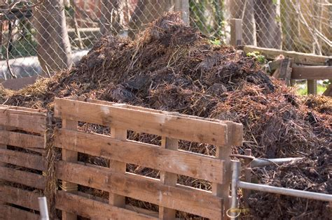 backyard compost pile benefits of compost learn about the advantages of using