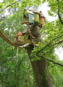 awesome tree houses awesome tree houses i could live in thechive