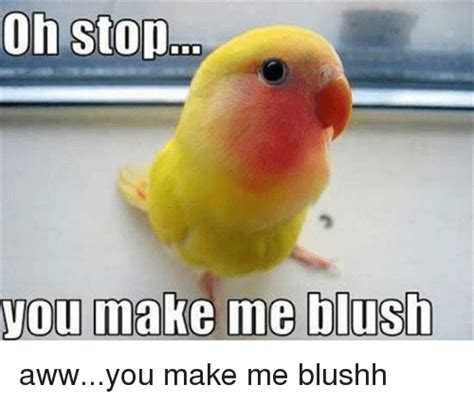 Blushing Memes - you make me blush awwyou make me blushh aww meme on me me