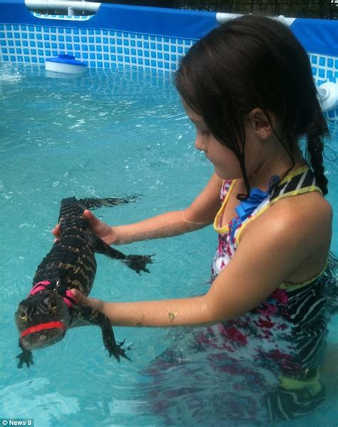 controversial swimsuits for children would you let your children swim with alligators animal