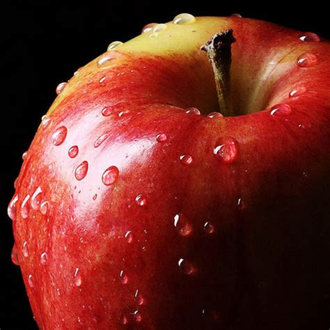apple uttwiler spatlauber biosis da vinci
