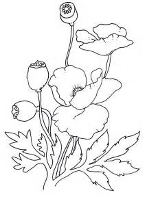 Free Coloring Pages Of Anzac Poppies sketch template