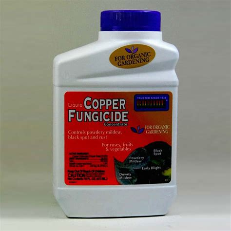 fungicide for upholstery bonide copper fungicide 16oz harmony farm