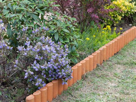 planting flowerbeds garden borders choosing plants for