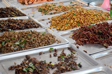 il fatto alimentare it insetti ristorante il fatto alimentare