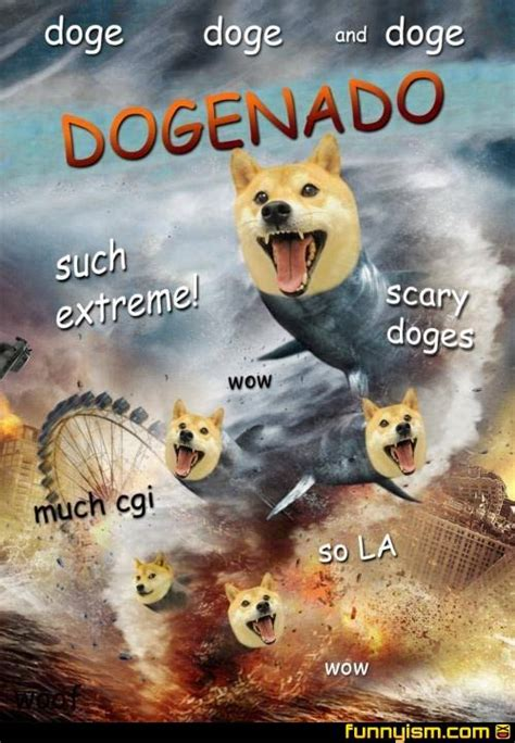 Funny Doge Memes - doge meme on pinterest black friday funny funny friday