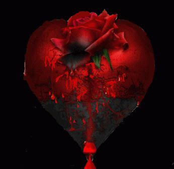 imagenes rosas sangrando 25 melhores ideias sobre flor cora 231 227 o sangrando no