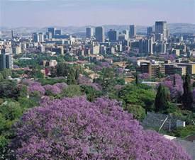 jacaranda city tshwane pretoria south africa pretoria